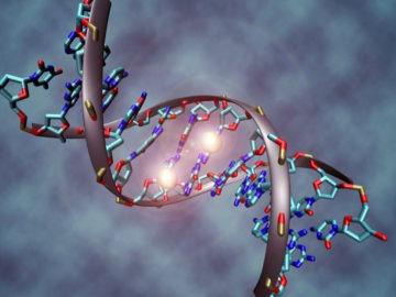 Cząstka DNA